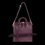 Louis Vuitton Speedy Bandoulière 25